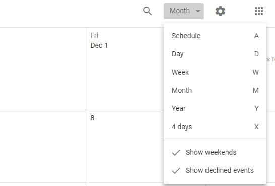 Google Calendar View