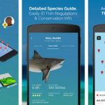 7 Best Fishing Apps for Android
